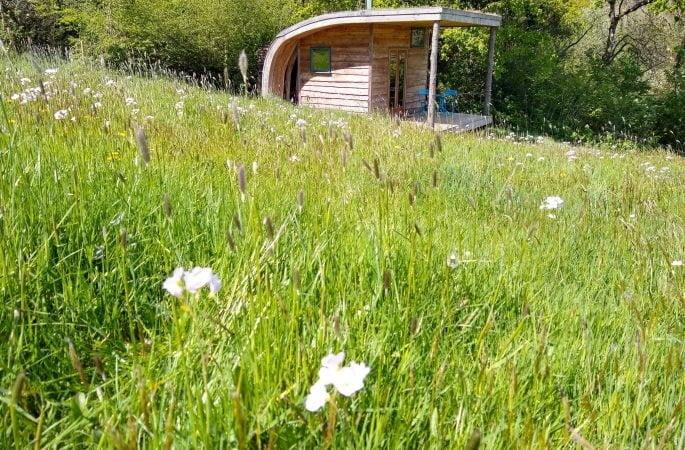 Derwen cabin with Ladysmock